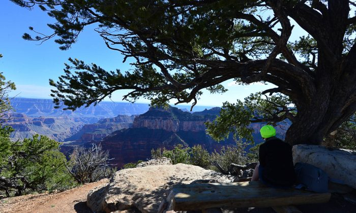 A girl waiting for the sunset quietly at Grand Canyon North Rim. (Bill Cox/Epoch Times)