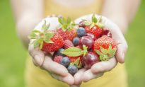 Ever Considered Being a Nutritionist?