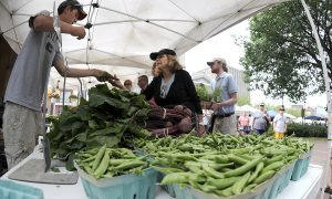 More Poor Are Getting to Eat Healthy, Thanks to Food Stamps