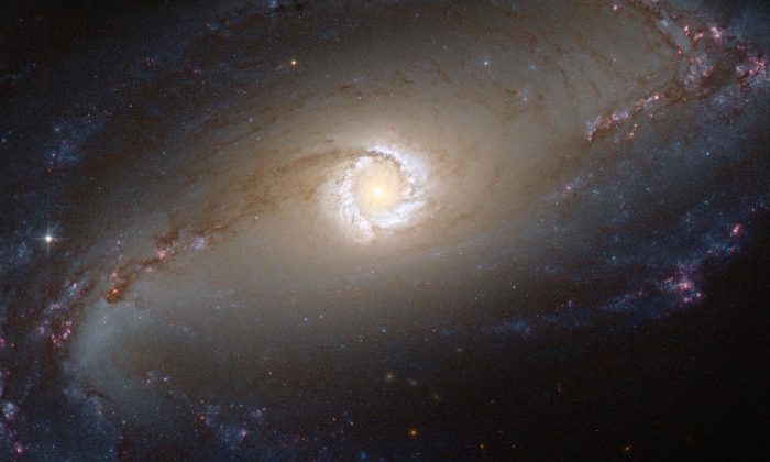A bright star-forming ring that surrounds the heart of barred spiral galaxy NGC 1097 in this file photo. (NASA)