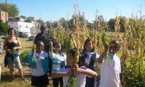 Raising the Bar on Healthy Foods in DC Public Schools