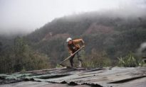Volcano Pacaya Active Again in Guatemala