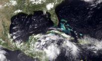 Tropical Storm Alex Moves North