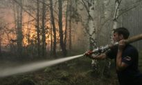 Russia Forest Fires Leave 25 Dead