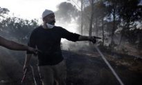 Israel Fire: 14-Year-Old Admits Starting Forest Fire