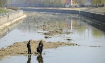 China's Seven River Systems Are All Polluted