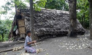 Wary of Climate Change, Vanuatu Villagers Seek Higher Ground