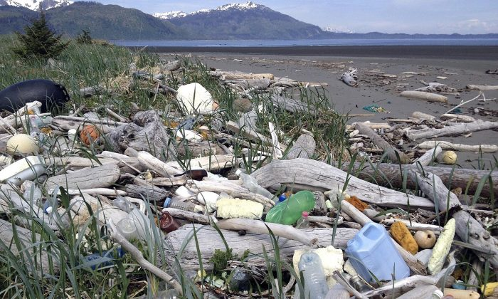In this undated photo provided by the Alaska Department of Environmental Conservation, debris litters the shore on Montague Island, Alaska.  (Alaska Department of Environmental Conservation via AP)