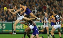 Battles of the Birds: AFL Teams Fly into Preliminary Finals