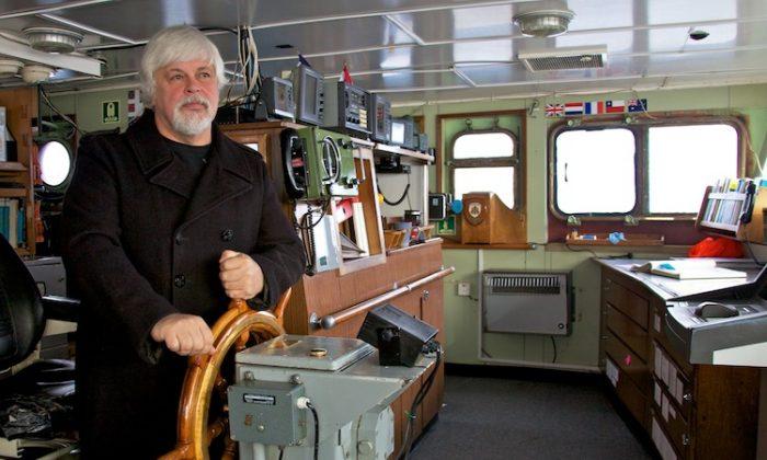 Captain Paul Watson, head of Sea Shepherd Conservation Society. (Barbara Veiga/Sea Shepherd)