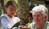 Rescued Exotic Birds Delight Children at Bryant Park