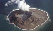 Island Life Renews After Catastrophic Volcano Eruption in Alaska