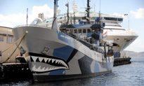 Whalers, Activists Clash in Antarctic