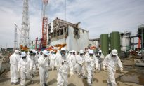 Why TEPCO Failed to Prevent the Fukushima Disaster