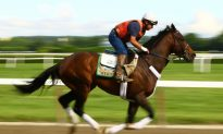 Strike May Affect Saturday Belmont Stakes