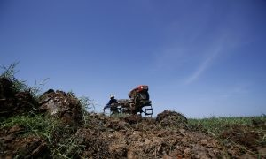 Thai Farmers Told to Wait for Rain, Save Water for Public