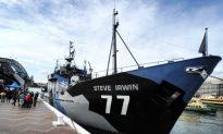 Japanese Whaling Fleet Dropped Fuel in Antarctic, Sea Shepherd Says