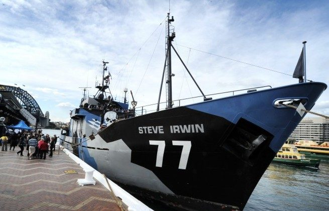 The environmental activist Sea Shepherd's main ship the Steve Irwin is anchored at Sydney Harbour after arriving on Aug. 31, 2012. (Romeo Gacad/AFP/GettyImages)