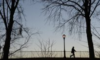 Crime Increase in NYC Parks 'Very significant,' Says Council Member