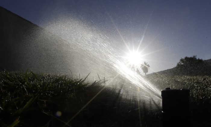 In this June 23, 2015, file photo a lawn is irrigated in Sacramento, Calif.  (AP Photo/Rich Pedroncelli)