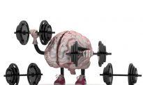 The Fallacies of 'Brain Training'