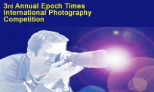 Preliminary Selection for Epoch Times Photography Competition Completed