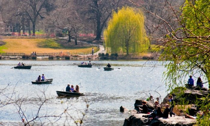 People enjoy warm weather in March by taking a relaxing rowboat ride on the lake in Central Park. (Ben Chasteen/The Epoch Times)