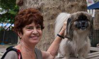 Improving Pet Relationships by Addressing the Behavior