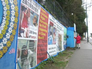 A Falun Gong practitioner stands outside the shelter that the City of Vancouver said violated a bylaw. A city bylaw prohibiting the protest signs and hut of the group in front of the Chinese consulate in Vancouver has been struck down as unconstitutional by the B.C. Court of Appeal. (Helena Zhu/The Epoch Times)