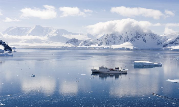 Paradise Harbor in Antarctica.  (Photodynamic/iStock)