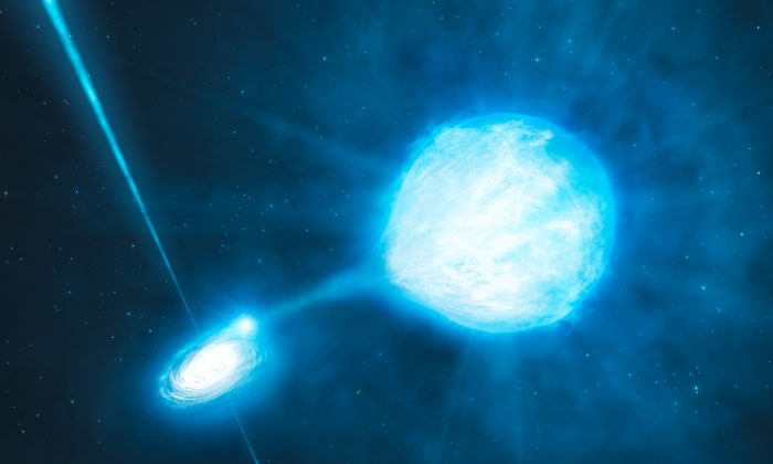An artist's rendering of NGC 300 X-1 as it was envisioned shortly after its discovery—an unusually massive black hole (left) with a Wolf-Rayet star (right). Binder and her colleagues recently showed that the Wolf-Rayet star may not be the black hole's true companion.(ESO/L. Calçada/M. Kornmesser)