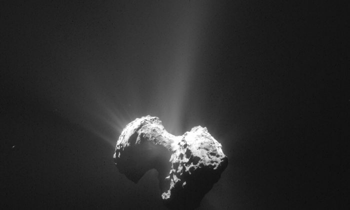 The July 20, 2015 photo released by the European Space Agency ESA on Tuesday, July 28, 2015 shows an image of the comet 67P/Churyumov-Gerasimenko with its coma taken by the Navcam camera of the Rosetta orbiter from a distance of 171km (106 miles) from the comet center. (AP Photo/ESA/Rosetta/Navcam)