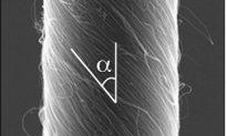 Flexing Carbon Nanotube Motor Mimics Muscles
