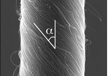 Scanning electron micrograph image of a 3.8-micron diameter carbon nanotube yarn that functions as a torsional muscle when filled with an ionically conducting liquid and electrochemically charged. The angle indicates the deviation between nanotube orientation and yarn direction for this helical yarn. (University of Texas at Dallas)