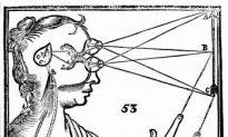 Pineal Gland, the Internal Eye