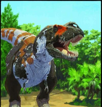 Like other meat-eating dinosaurs included in the study, T. rex maintained a stable level of biodiversity leading up to the mass extinction at the end of the Cretaceous. (AMNH/J. Brougham)