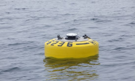 Wave Glider Robot Observes Great White Highway