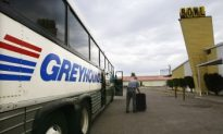 Entrepreneurs to Capitalize on Greyhound Route Cuts
