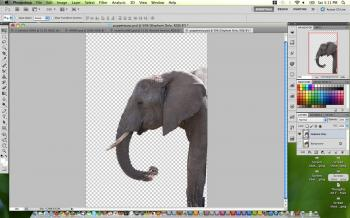The trunk of the elephant is moved in the photo using the Puppet Warp feature in Adobe Photoshop CS5. (Joshua Phillip/The Epoch Times)