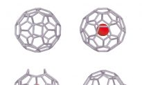 Buckyball Used as 'Nano-Lab' to Study Water Molecule