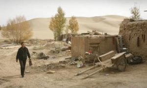 China's Great Green Wall Proves Hollow