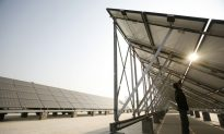 Game Over for China's Photovoltaic Manufacturers