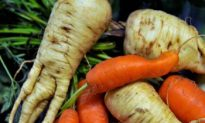 Wonky Fruit and Vegetables to Enter EU Market