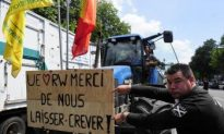 In Brussels, Unhappy Dairy Farmers Block Traffic
