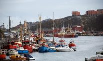 Small-Town Greenland Prepares for Influx of Foreign Workers