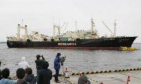 Japanese Whaling Fleet's Inglorious Retreat Draws Criticism