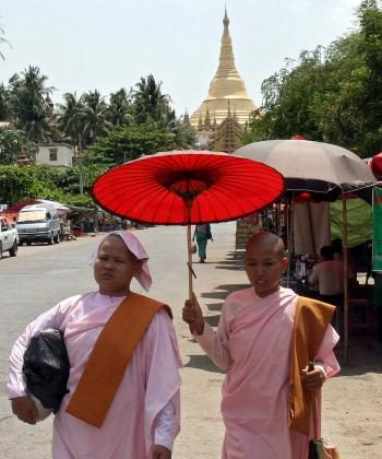 Buddhist nuns protect themselves from the sun with a parasol as they walk along a street in Yangon on May 10, 2010.  (AFP/AFP/Getty Images)