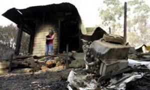 Australian Fire Victims Start Rebuilding Process