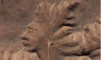 Gods on Earth: When Rocks Take Human Form