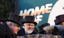 Groundhog Day 2011: Punxsutawney Phil Returns to Prognosticate Weather